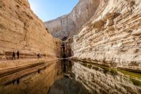 Источник и водопад Эйн Авдат, неподалеку от развалин древнего набатейского города Авдат